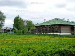 Wood house in rural place