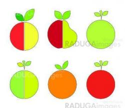 Signs of fruits