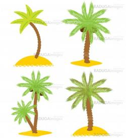 Set of various palm trees. Objects isolated. Vector