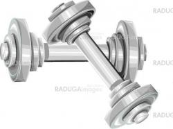 Two silver dumbbels