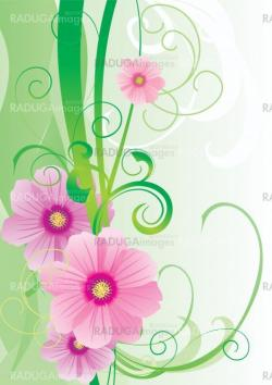 green vector spring illustration with pink cosmos flower