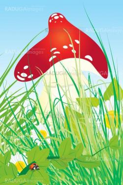 red mushroom vector wih grass, ladybird and daisies