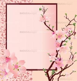 vector pink frame with sakura flowers and ornate panel