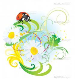 vector ladybird on daisy flower summertime illustration