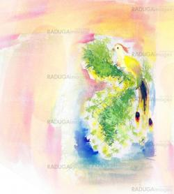 colorful watercolor paint bird illustration