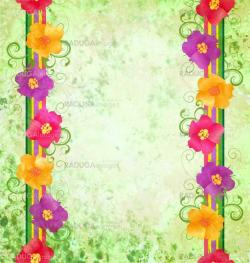 colorful flowers border on green background spring nature grunge