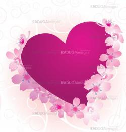 violet and pink heart with blooming cherry tree flowers isolated