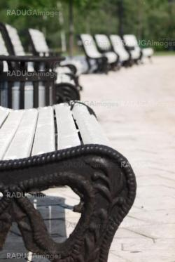 white benches in a park