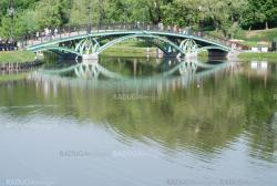 bridge in Moscow city park  at the summer
