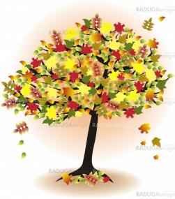 season tree for autumn with colorful leafs
