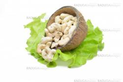 Cashew nuts in coconut