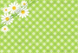background with daisies