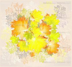Illustration of  leaves of a maple.  Autumnal background.