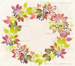 Greeting card with wild grapes. Autumnal background.