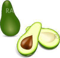 two avocado halves with kernel – alligator pear