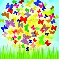 Colorful background with butterfly, beautiful decorative background. EPS10
