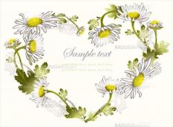 Decorative heart. Hand drawn valentines day greeting card. Illustration camomile