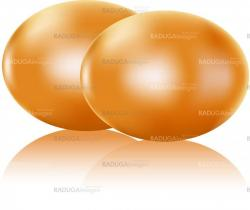 Two painted eggs isolated on white