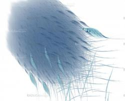 Blue abstract feathers